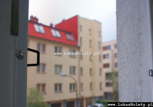 Galeria moskitiery ramkowe 12