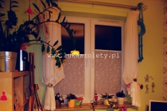 Galeria-zaluzje-plisowane-plisy-ab41-068